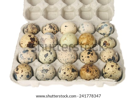 quail eggs in a carton box isolated on white background - stock photo