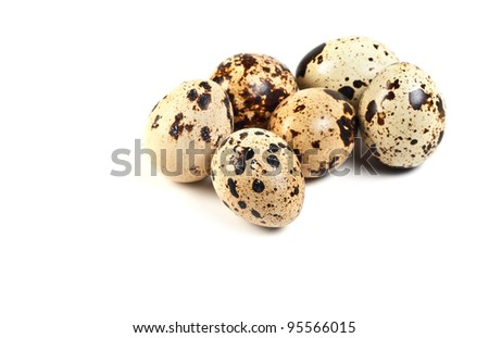 Quail eggs isolated on a white background - stock photo
