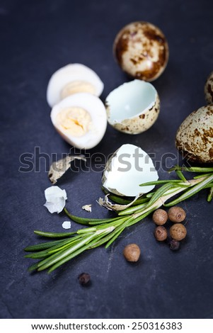 Quail eggs on black plate - stock photo