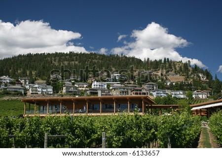 Quails Gate Winery - stock photo