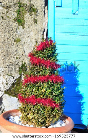 quaint christmas tree in Portovenere Italy - stock photo