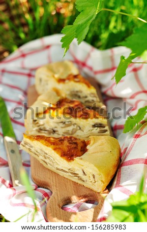 Quiche Lorraine with mushrooms, copy space for your text - stock photo