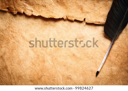 Quill pen - stock photo
