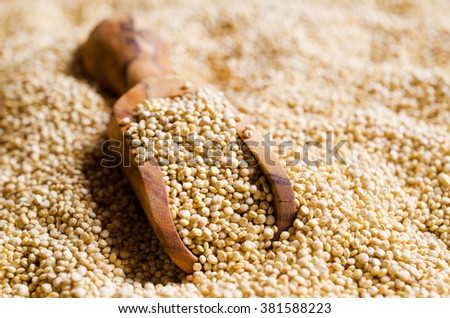 Quinoa dry seeds as background. Selective focus. - stock photo