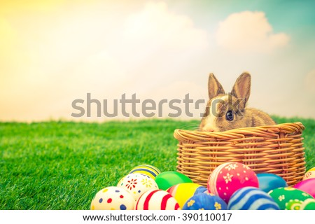 Rabbit and easter eggs in green grass with blue sky ( Filtered image processed vintage effect. ) - stock photo