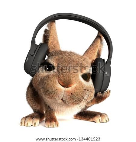 Rabbit in the headphones - stock photo