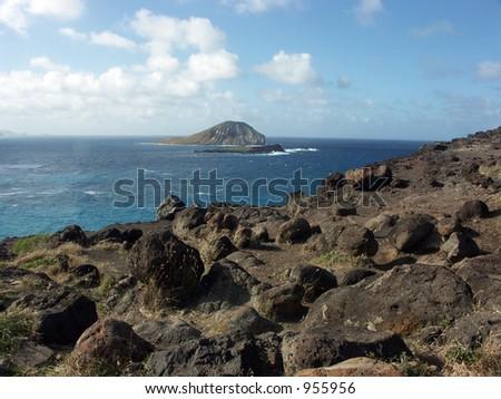 Rabbit Island - stock photo