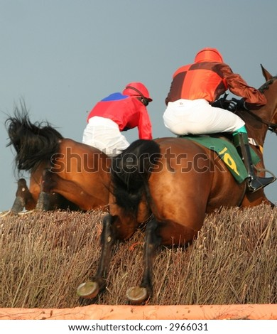 race horse - stock photo