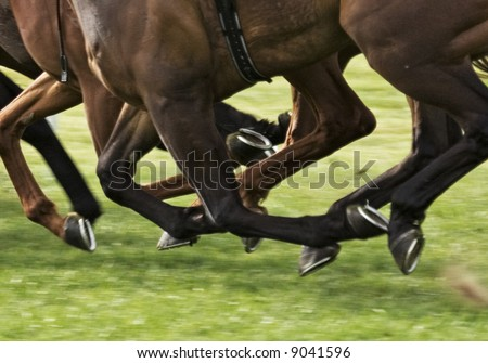 race horses galloping with all hooves clear of the ground - stock photo