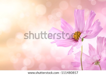 Radiance cosmos on bokeh light effect background - stock photo