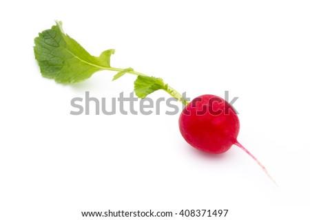 Radish fresh isolated on white background.  - stock photo