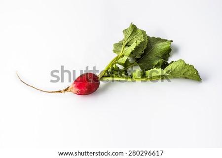 Radish isolated on a white background   - stock photo