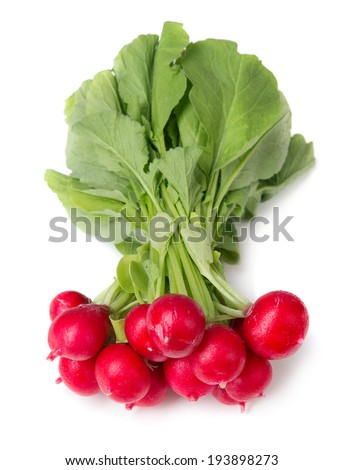 radish isolated on white background - stock photo