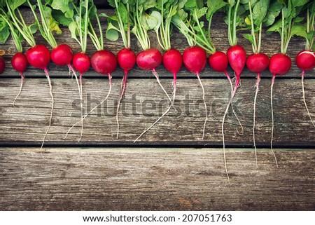 Radish on wooden background - stock photo