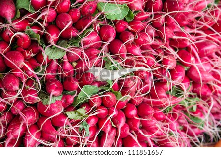 Radishes at market - stock photo
