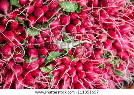 Radishes at market - stock photo