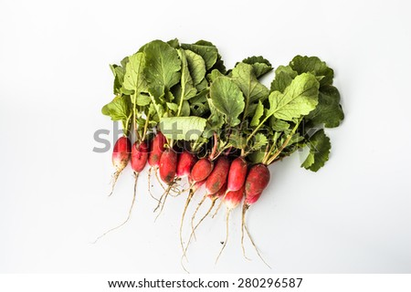 Radishes from the ground isolated on a white background  - stock photo