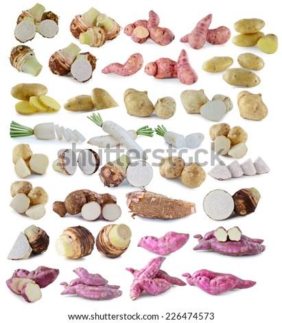Radishes,jicama ,whole manioc (cassava) ,potatoes,purple yams ph - stock photo