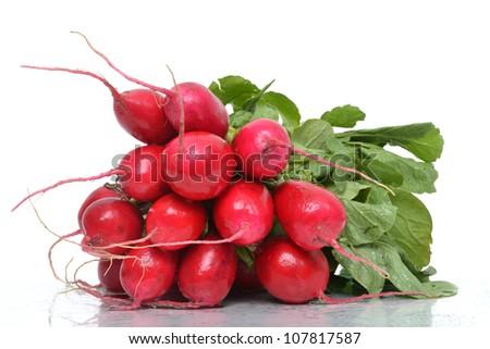 radishes on white background - stock photo