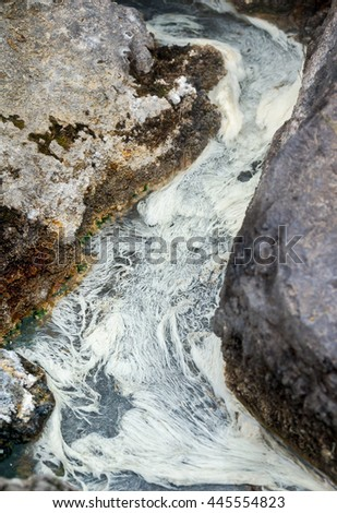 Radon source with white algae - stock photo