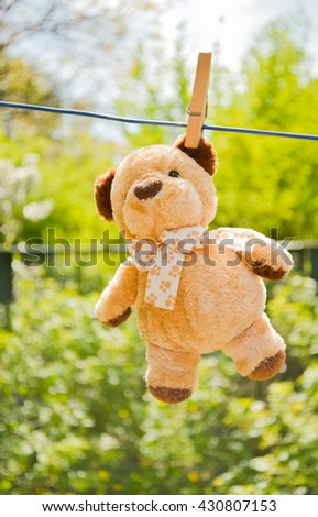 Rail clothespin and a teddy bear in the background.fuzzy brown teddy bear hanging on a clothesline with retro wooden clothespins.Wet teddy on a clothesline outdoors - stock photo