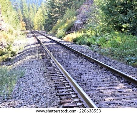 Railroad rails - stock photo