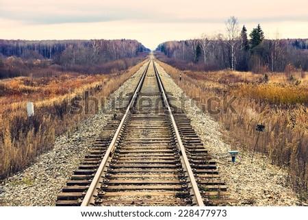 Railway in autumn forest - stock photo