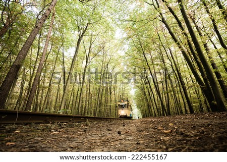 Railway leading through the autumn forest with motion blurred train. Wide shot from low angle perspective. Color toned image. - stock photo