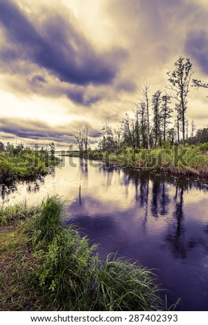 Rain clouds over the forest lake. View from the coast, image in the yellow-blue toning - stock photo