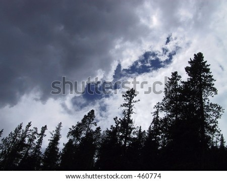 rain clouds storming over trees in Banff, Alberta - stock photo