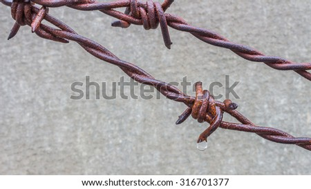 Rain drops on a rusty wire. - stock photo