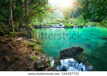 Rain forest National Park in Guatemala Semuc Champey at sunset - stock photo