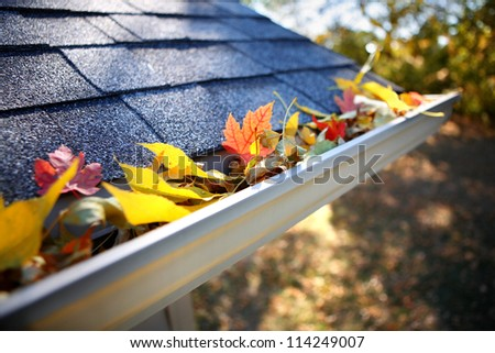 Rain gutter full of autumn leaves - stock photo
