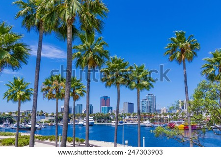 Rainbow Harbor with Palm trees and boats in front of  city skyline at Long Beach , CA  - stock photo