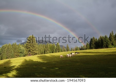 rainbow over mountains and alpine pasture, Germany - stock photo