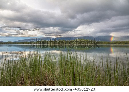 Rainbow reflected in beautiful, tranquil Boya Lake, Northern BC.  Tail, straight grasses give shape to the foreground  - stock photo