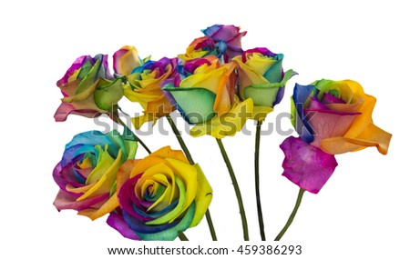Rainbow roses isolated in white background - stock photo