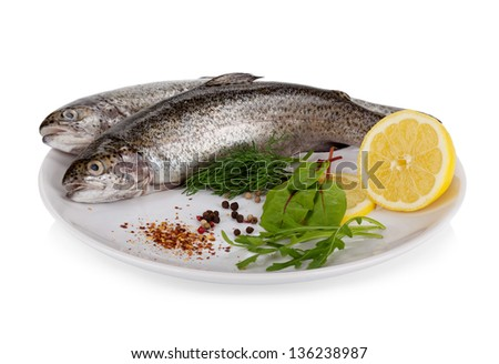 Rainbow trout isolated on white background - stock photo