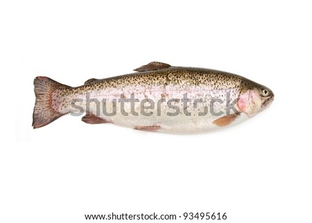Rainbow trout (Oncorhynchus mykiss) whole, isolated on a white studio background - stock photo