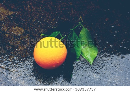 Raindrops, Tree leaf after the rain, orange tree after rain   - stock photo