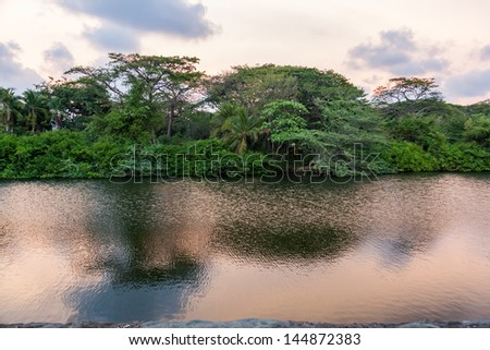 Rainforest and river in Central America. - stock photo