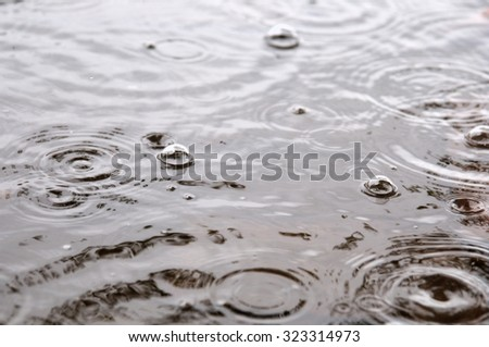 rainy day. bubbles on the water surface. photo toned  - stock photo