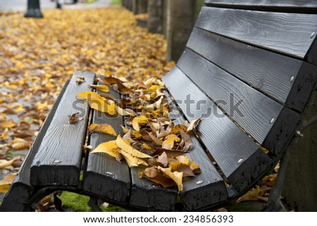 Rainy day in Autumn, leave have fallen on an old wooden bench and covered the sidewalk - stock photo