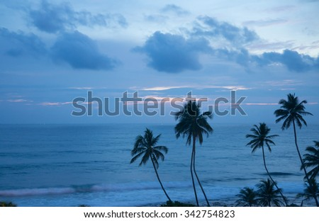 rainy sunset with palms, Indian ocean - stock photo