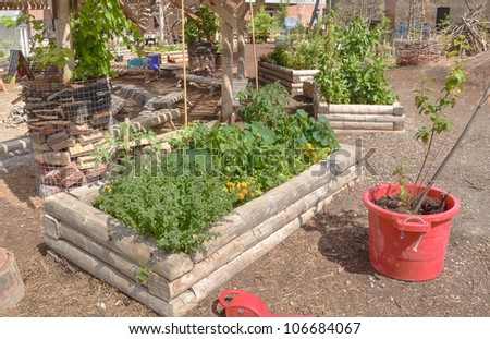 Raised bed in urban environment center - stock photo