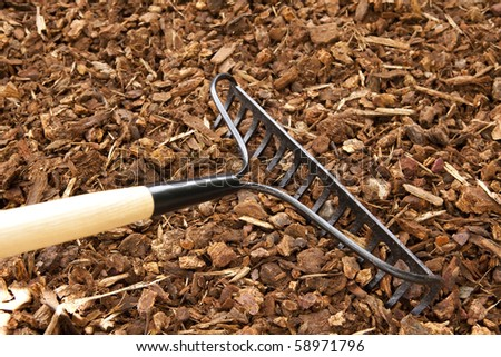 Rake Chips - stock photo