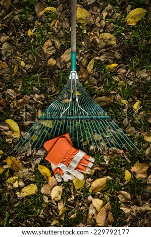 raking leaves with a set of work gloves - stock photo