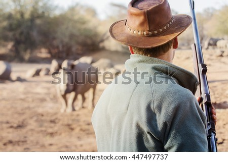 Ranger with firearm stands face to face with rhino and watches the behavior of the rhino. - stock photo