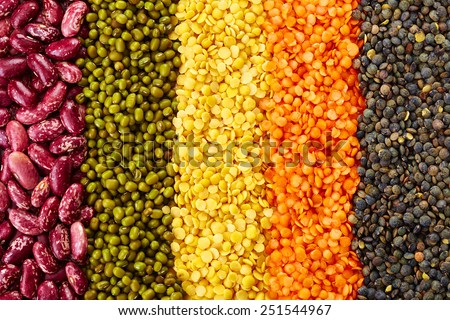 ranks of various legumes (red lentils, black lentils, yellow lentils, red beans, green mung beans) isolated on white background - stock photo