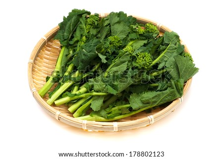 Rape Blossom Buds, This image is available for clipping work.  - stock photo